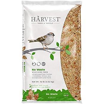 Amazon.com : BestNest Wild Bird Seed Mix, Waste Free Blend, 50 lbs. : Wild Bird Birdseed : Garden & Outdoor350 x 350 jpeg 20kB