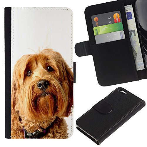 EuroCase - Apple Iphone 6 4.7 - labradoodle terrier yellow fur dog - Cuir PU Coverture Shell Armure Coque Coq Cas Etui Housse Case Cover