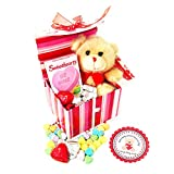 'I Love You BEARY Much!' Valentine Gift Basket with Teddy Bear Plush
