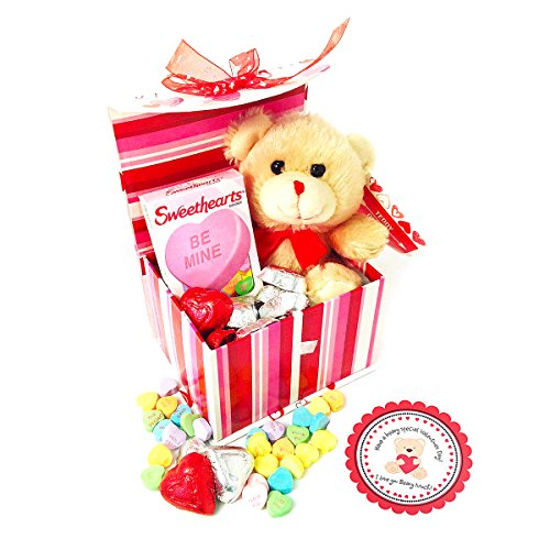I-Love-You-BEARY-Much-Valentine-Gift-Basket-with-Teddy-Bear-Plush