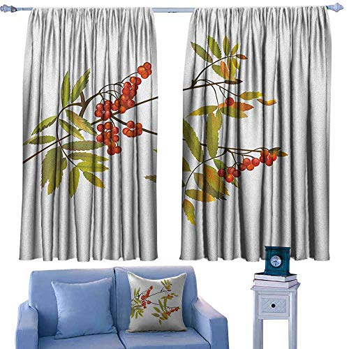 AndyTours Decor Waterproof Curtains,Rowan Fresh Organic Ashberry Tree Botanical Natural Gardening Plants Illustration,for Bedroom,Nursery,Living Room,W72x72L Inches Green Red Brown ()