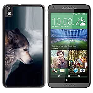 Impact Case Cover with Art Pattern Designs FOR HTC DESIRE 816 Wolf Waterfull Indian Wild Animal Forest Betty shop