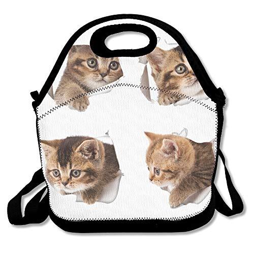 (Bjiansoah TDynasty Fashion Designer Lunch Box Outdoor Travel Picnic Lunch Box Bag Messenger Lunch Bag 4 Baby Cats Adjustable Body Strap Bag Handbag for School Office)