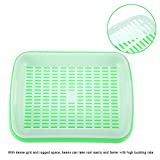 "(Pack of 2) Seed Sprouter Tray, Durable Hydroponics Basket Soilless Seed Germination Tray Double Layer Nursery Pot Flower Vegetable Seeding Grow Case(12.60"" x10.24""x 1.97"")(Green)"