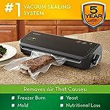 FoodSaver FM2000 Vacuum Sealer Machine with Starter Bags & Rolls   Safety Certified   Black
