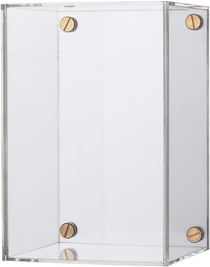 IKEA ASIA BJORNARP - Caja expositora: Amazon.es: Hogar