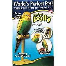 Perfect Polly Parakeet