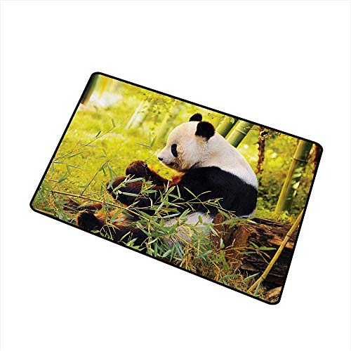 (Becky W Carr Panda Front Door mat Carpet Big Panda Sitting Forest Eating Bamboo Tree Trunk Foliage Wilderness Picture Print Machine Washable Door mat W15.7 x L23.6 Inch,Green Black)