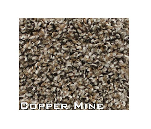 2'x3' - Economical Solutions Warm Touch Carpet Area Rug Collection - BROWEST, Copper Mine | 5/8