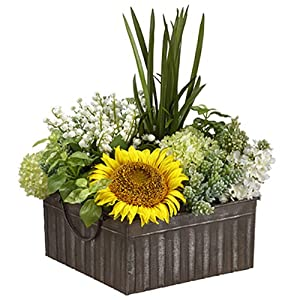 "18"" Hx16 W Sunflower, Succulent & Snowball Silk Flower Arrangement -Yellow/Green 6"