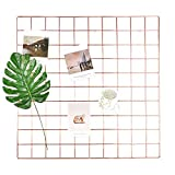 ANZOME Grid Panel, Plant Photo Post Card Pendant Memo Display Gridwall for Living Room,Balcony,Bedroom,Kitchen,Bathroom Decoration (Rose Gold)