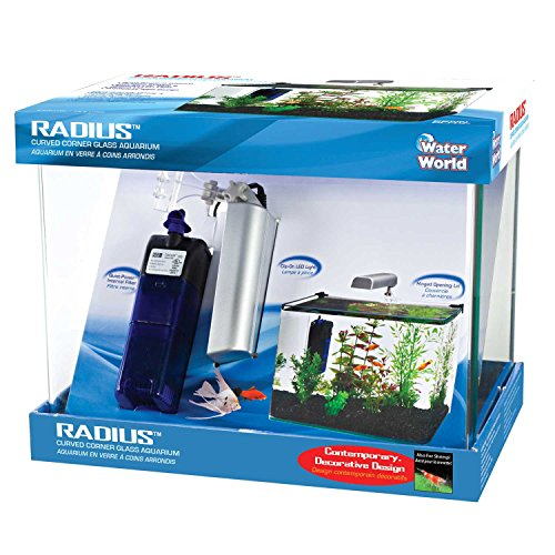 Penn Plax Curved Corner Glass Aquarium Kit, Filter, LED Light, Float Glass For Maximum Viewing 5 Gallon