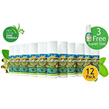 Premiere's Pain Spray Roll-On 12 Pack (Includes 3 Free 1 oz. Travel Size Spray Bottles) Natural Pain Relief Roll-On: Drug Free Back Pain Relief, Help for Neck & Shoulder Pain, No-Spill Liquid Gel