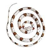 Banded Rock Rattlesnake 48