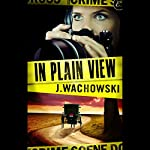 In Plain View | J. Wachowski