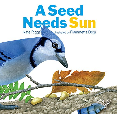 Download A Seed Needs Sun pdf