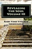 Revealing the Soul, Rabbi Serebryanski, 1466358017