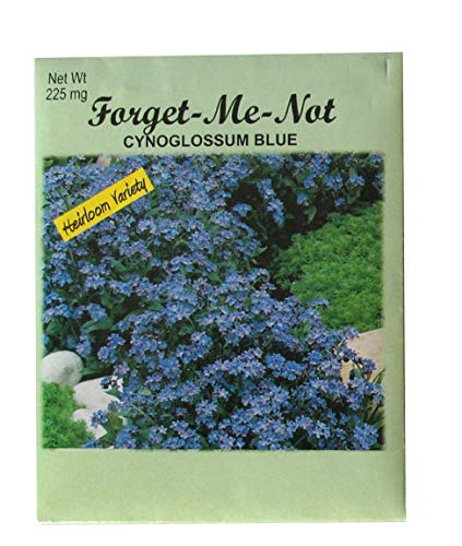 Top 10 recommendation forget me not seeds individual packets for 2019