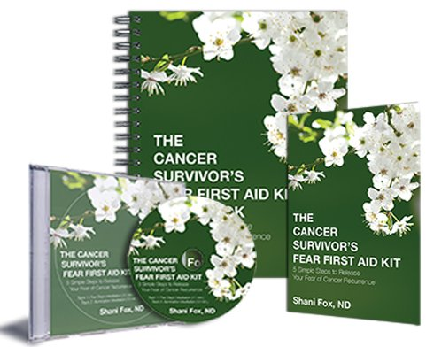 Read Online The Cancer Survivor's Fear First Aid Kit PDF