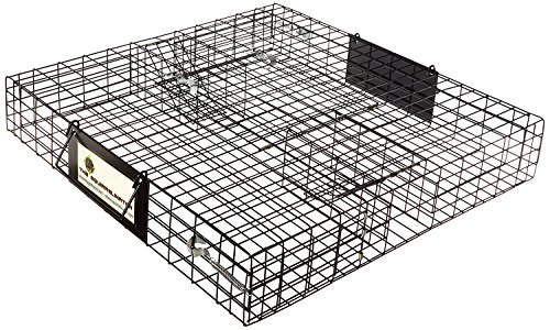 Rugged Ranch Products 100063928 Squirrelinator Trap (Pack of 1)