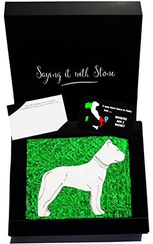 Valentine's Day gifts for boyfriend ❤ Pitbull ❤ Elegant gift box with blank message card included ❤ Made in Italy by Hand ❤ Italian stone with fossil fragments ❤ birthday anniversary new job Presents