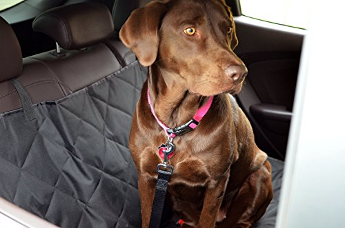 Pet Car Seat Cover With Seatbelt Leash for Cars, Trucks, Suv's and Vehicles | WaterProof & NonSlip Backing Review