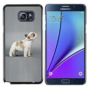 YiPhone /// Prima de resorte delgada de la cubierta del caso de Shell Armor - Cachorro de Bulldog francés Grey Dog - Samsung Galaxy Note 5 5th N9200