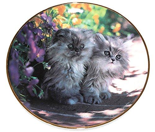 (Franklin Mint The Sitting Pretty by Artist Nancy Mathews Fine Porcelain 8