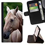 FJCases Brown Horse Stallion Animal Slim Wallet Card Holder Flip Leather Case Cover for Apple iPod Touch 6