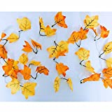 MeeDoo 40LED/14.7FT Autumn Garland 8 Modes Battery Powered Lighted Fall Garland, Maple Leaves Garland Perfect Decoration for Thanksgiving Christmas Halloween Party Wedding (Warm White)