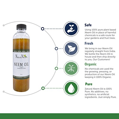 Zatural Organic Virgin Neem Oil 1 Gallon: 100% Natural Pure Cold Pressed No Additives, Unrefined Concentrate for Body and Skin, Pets, and Plants or Garden by Zatural (Image #2)