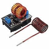 BAJIAN-LI induction heating power supply module tesla Jacob's ladder 5v-12v 9v coil