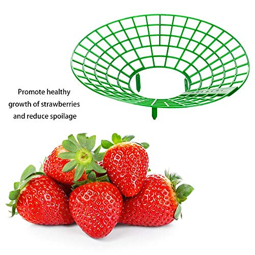 (keebgyy Strawberry Supports, Plastic Coating Plant Stem Support Keeping Fruit Elevated Avoid Ground Rot, for Strawberry Gardening Supplies, 3 Packs)