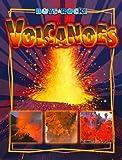 Volcanoes, Leslie Dinaberg, 1592967396