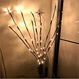 Branch Lights - Led Branches Battery Powered Decorative Lights Willow Twig Lighted Branch for Home Decoration Warm White - 30 inches 20 LED Lights (Branches Light)