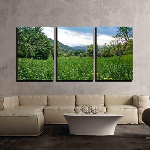 Dandelions in Green Grass in Untouchable Nature Field x3 Panels