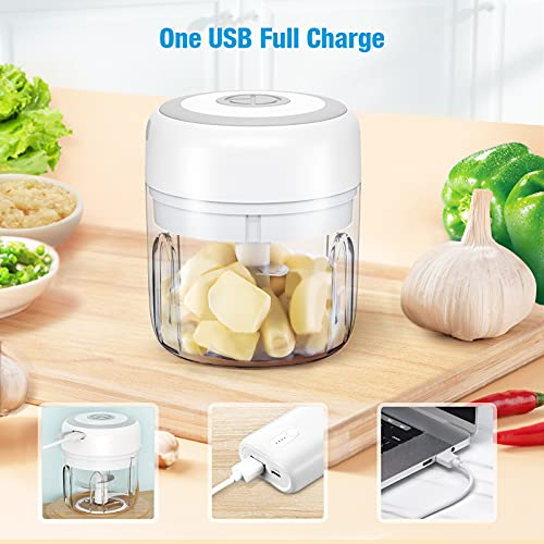 Electric Mini Garlic Chopper, LEPO Wireless Mini Food Chopper Mincer with USB Charging, Double Bowl & Two Blade Rechargeable Mini Food Processor Chopper for Meats/Pumpkin/Baby Food (250ML&100ML)