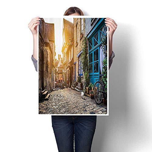 """3D Hand Painting Old Town in Europe SunRetro Vintage Coffee Shop Blossoms Cat Alleyway Wall Art for Hallway Bathroom,32""""W x 60""""L(Frameless)"""