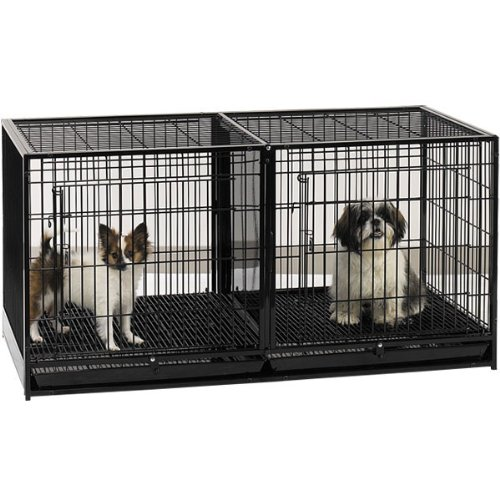 ProSelect Steel Modular Cage with Plastic Tray, - Stackable Pro