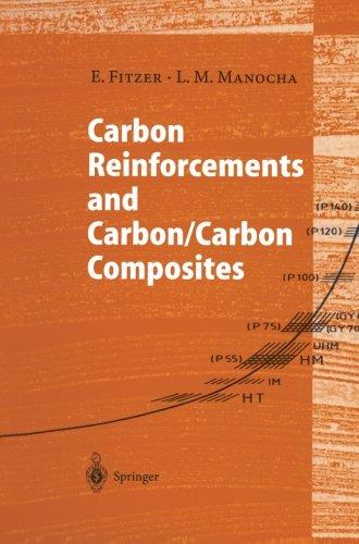 Carbon Reinforcements and Carbon/Carbon Composites