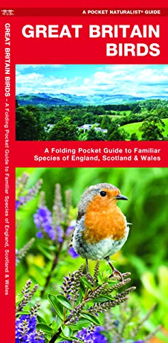 Pdf Travel Great Britain Birds, 2nd Edition: A Folding Pocket Guide to Familiar Species of England, Scotland & Wales (Pocket Naturalist Guide)