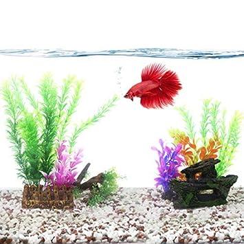 DealMux un campo de hierba madera a la deriva en barco planta de decoración plástica conjunto acuario: Amazon.es: Productos para mascotas