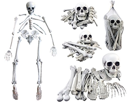 Custom Made Dance Costumes New York (28PCS Skull Skeleton Bones Hanlloween Decoration Plastic Skull Head for Holiday Props)