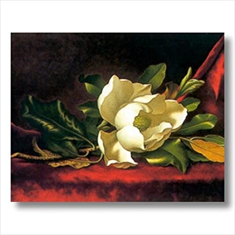 White Magnolia Flower Floral Contemporary Wall Picture 16x20 Art Print