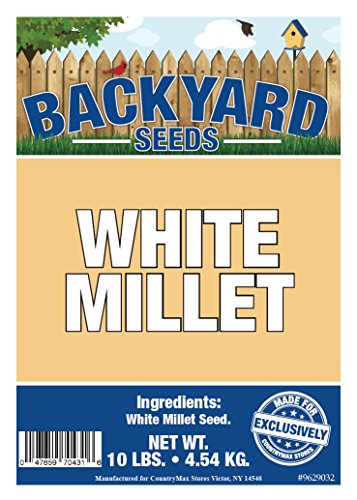 CountryMax Backyard Seeds White Millet Bird Seed 8 Pounds