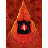 RED CARDINAL BIRD - BIG FACE - 9X12 HIGH QUALITY ALUMINIUM ART WORK PRINT READY FOR HANGING OR MOUNTING - THIS ART WORK PRINT SHOULD BE USED INDOORS. OUR ART WORK PRINT SIGNS MAKE EXCELLENT GIFTS!