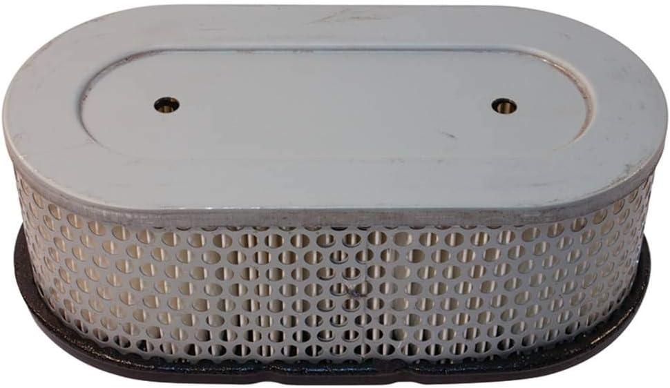 Stens 102-467 Air Filter