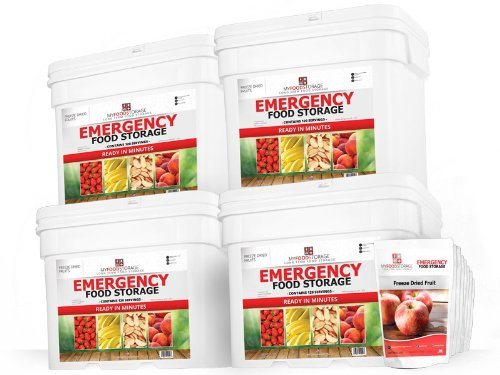 (My Food Storage (480 Servings of Freeze Dried Fruit) Sealed in Mylar Pouches - Best Emergency Food Supply - Fast, Easy and Delicious)