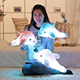 Wewill Brand Creative Colorful LED Light Stuffed Animal Toy Glowing Dolphin Plush Toys 18 Inch