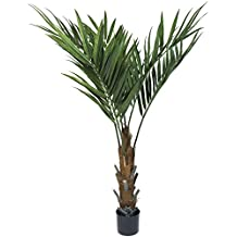 Pure Garden 60 Inch Kentia Palm Tree